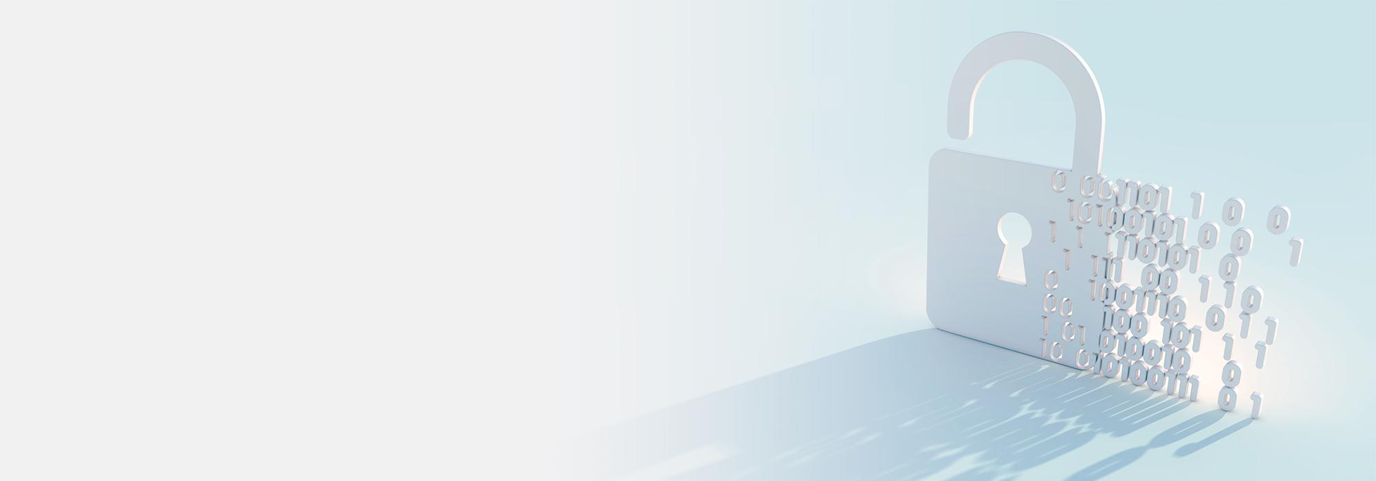 Privacy Policy | Tek Portal | 700x2000